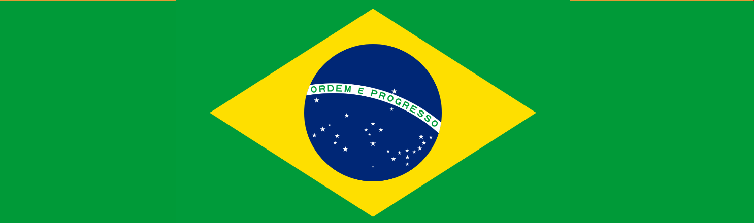 Brazilian-flag - about us